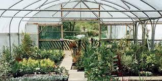 charlotte garden and nursery s
