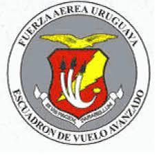 FUERZA AÉREA DE URUGUAY (FAU) - Página 31 Images?q=tbn%3AANd9GcSqXTG6xygcTERynaFdLDAA2vnjWAmtORkGbg&usqp=CAU