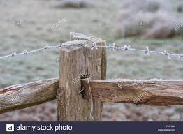Fence Post In The Fog High Resolution Stock Photography And Images Alamy
