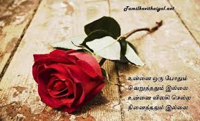 pin on tamil kavithai images text