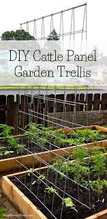 Diy Garden Trellis Frugal Family Home