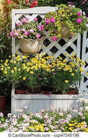 Colorful Flower Pots With Fence