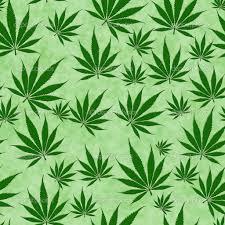 leaf wallpaper on wallpapersafari
