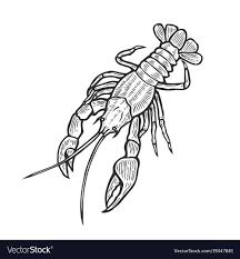 marine lobster Royalty Free Vector Image