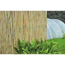 Buy Reed Garden Screening 4m X 1 5m Garden Fencing And Trellis Argos