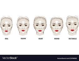 highlight makeup royalty free vector image