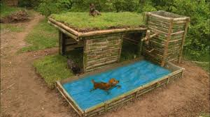 Build Beautiful Wild Dog S House With Shower Pool Youtube