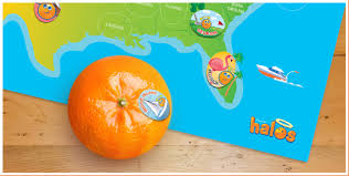 wonderful halo oranges slubne suknie info