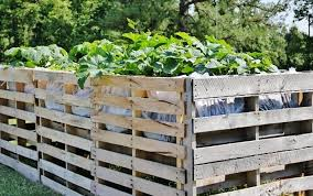 Cheap And Cheerful Pallet Fencing The Owner Builder Network