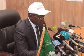 البعثة الإفريقية لمراقبة الانتخابات في
