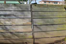 Diy Cat Proof Fence Animals Mom Com