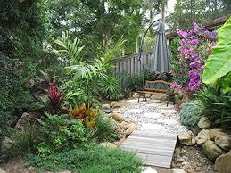 small tropical garden room