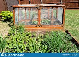 Hardware Cloth Used For Vegetable Garden Fence Stock Photo Image Of Window Applications 178800734