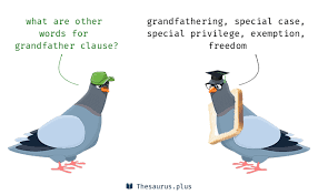 5 Grandfather clause Synonyms. Similar words for Grandfather clause.