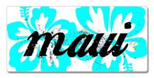 Amazon Com Graphics And More Hibiscus Flowers Maui Window Bumper Sticker Automotive