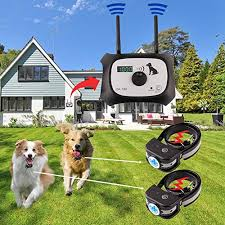 The Best Wireless Dog Fence Electric Pet Containment System Safe Effective Vibrate Shock Dog Fence Adjustable Range Up To 900 Feet Display Distance Rechargeable Waterproof Collar 2 Dog System Black 2019 It S Wireless