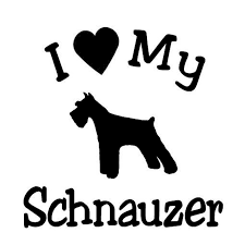 13 4cm 13cm I Love My Dog Schnauzer Pet Car Sticker And Decals C8 0020 Sticker Light Sticker Skinsticker Cover Aliexpress