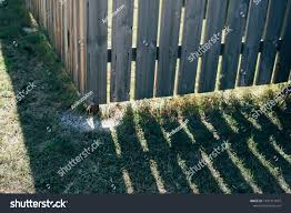Shadows Wooden Picket Fence Front Yard Parks Outdoor Stock Image 1497217937