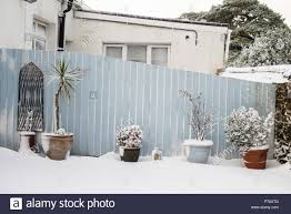 Snow Scene Of An English Garden With Pots And Plant Along A Pastel Colour Wooden Fence Stock Photo Alamy