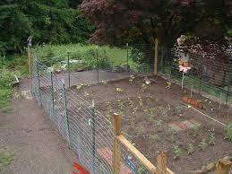 best garden fencing ideas brooklyn