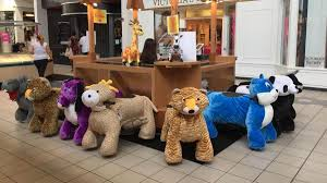 zoo rides kids salon open at