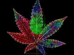 3d wallpaper cool weed leaf