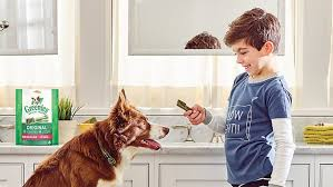15 Top Pet Products You Can Get At Petsmart Reviewed Pets