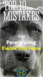 Top 10 Mistakes That People Make When Using Electric Dog Fences Or Electric Fence For Cats Dog Fence Wireless Dog Fence Pet Fence