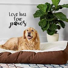 Amazon Com Vinyl Wall Art Decal Love Has Four Paws 16 X 17 Cute Trendy Pet Lovers Paw Design For Bedroom Living Room Playroom Office Decor Arts Crafts Sewing