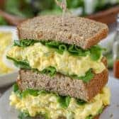 best egg salad recipe spend with