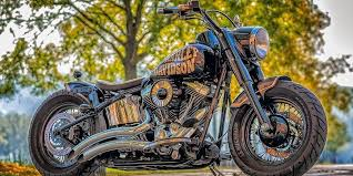 10 Best Harley Davidson Decals Must Read Reviews For November 2020