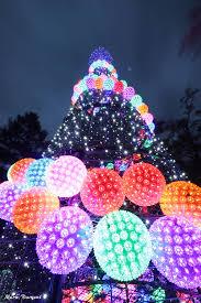 pnc festival of lights cincinnati zoo
