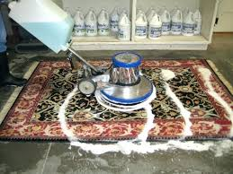rug dry cleaning savethefrogs2