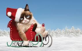 grumpy cat christmas backgrounds