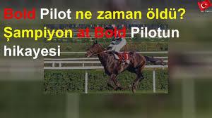 Bold Pilot ne zaman öldü? Şampiyon at Bold Pilotun hikayesi - YouTube