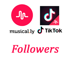 Image result for Tik Tok followers images