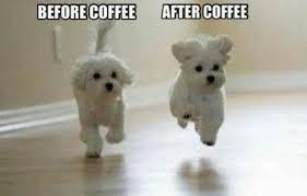 effect of caffeine image by patrisha on com