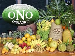 ono organic farms maui hawaii