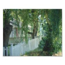 White Picket Fence Art Wall Decor Zazzle