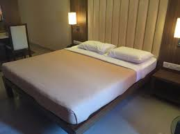 Adeline Johnson - Review of Hotel Ayush International, Mangalore ...