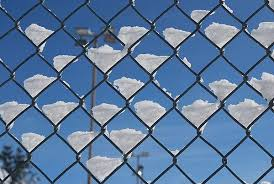 Guide To Residential Chain Link Fence Design