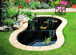 How To Create A Pond Ideas Advice Diy At B Q Rustic Backyard Spring Diy Projects Diy Landscaping