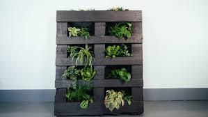 diy indoor vertical garden cbc life