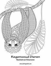 Regenwoud Dieren Regenwoud Dieren Kleurboek Voor Volwassenen 1 By