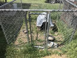 Dog Kennel And Dog House Nex Tech Classifieds