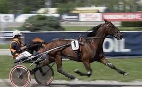 Faits divers : Deux chevaux de course de l'écurie Bazire se tuent ...