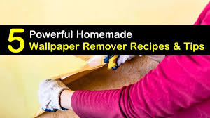 homemade wallpaper remover recipes 5
