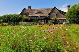 establishing a wildflower meadow