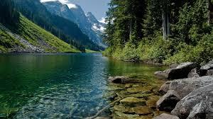 nature wild beautiful landscape