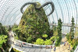 cloud forest flower dome